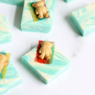 pool party summer fudge